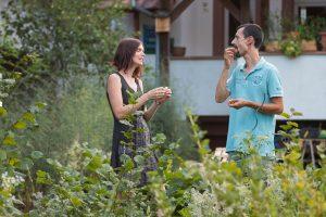 Visite commentée d'un jardin permaculturel @ Chez Mathieu Launay