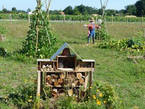 Atelier Jardinage naturel @ Place de la République à Wissembourg