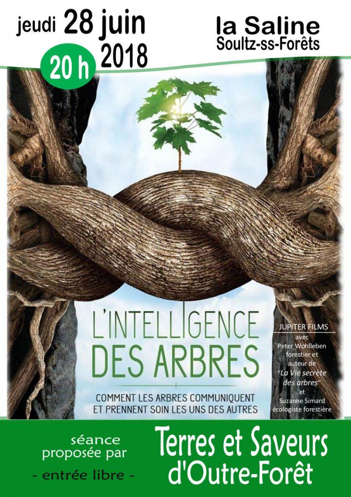 "Film ""L'intelligence des arbres"" @ La Saline"
